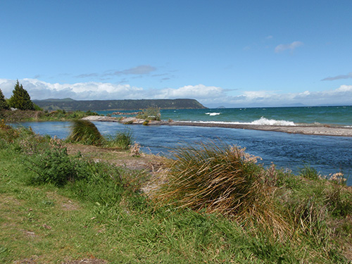 Waitahanui River as it flows into Lake Taupo