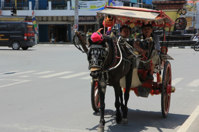 Bendi – a pony-drawn taxi